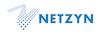 Netzyn, Inc.